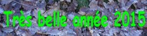annee2