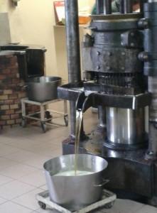 huile de noix4